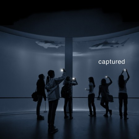 captured1-1200